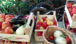 frutta orto la selva